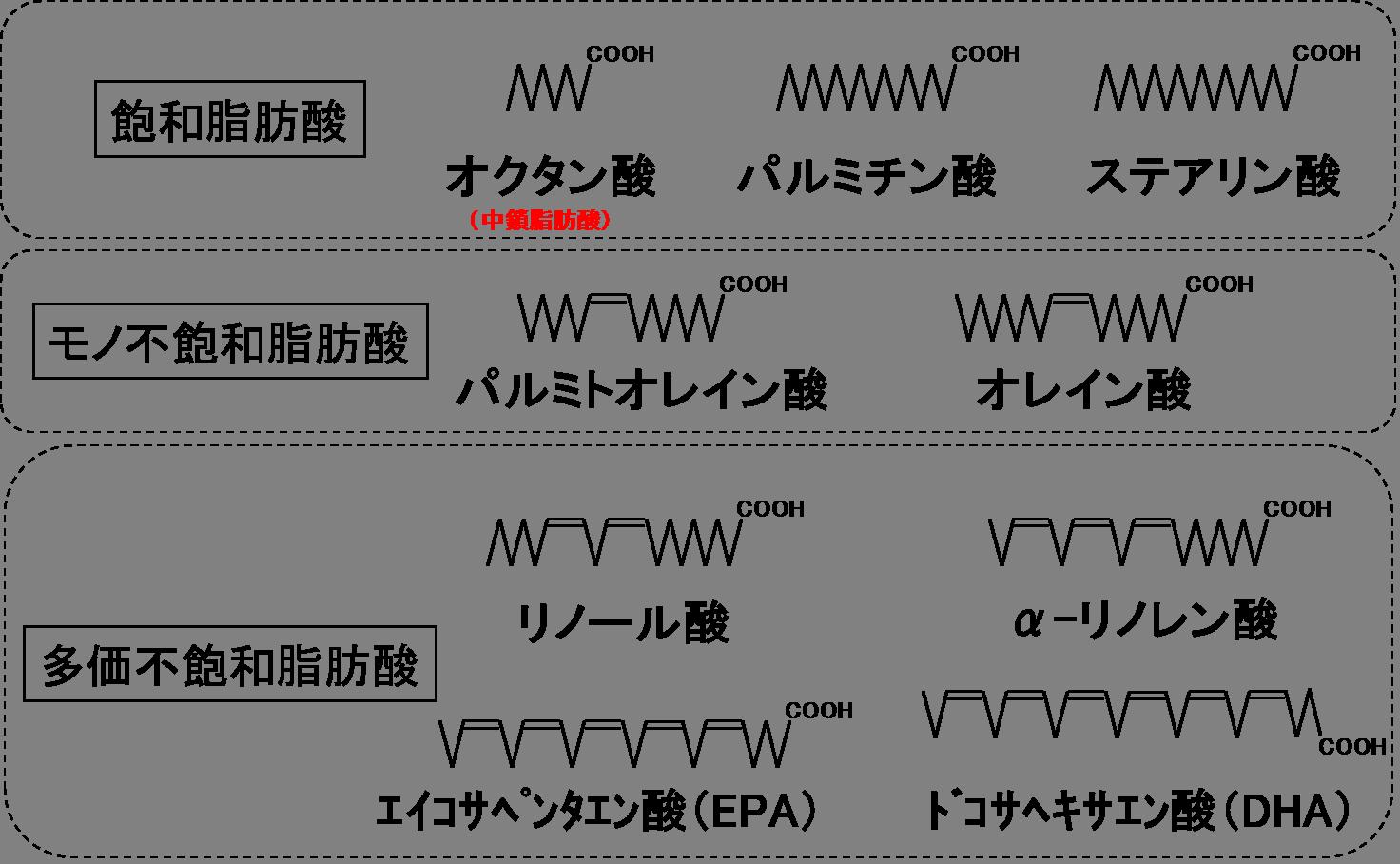 リノレン 酸 α